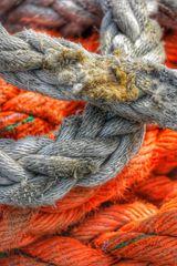 Cordes dans le port