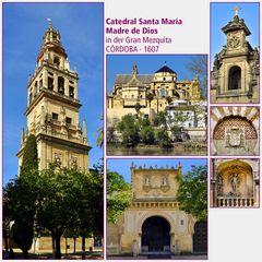 Córdoba · Catedral Santa María Madre de Dios I