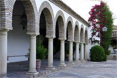 Cordoba´s patios X