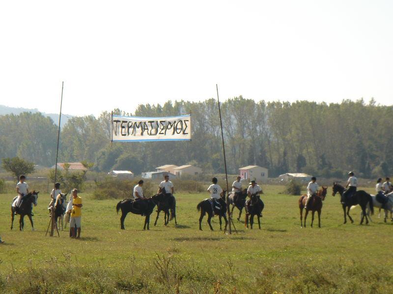 CORFU-HORSES-9