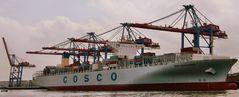 COSCO Development