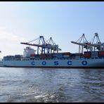Cosco im Containerhafen Tollerort