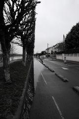coté Seine -Montesson