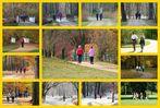 Cottbus, Branitzer Park: Parkläufer