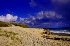 Cottesloe Dunes