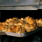 Cottura al forno del pane coccoi - Sardegna