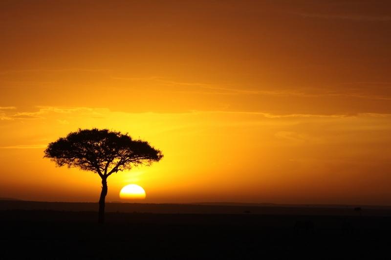 Couché de soleil - Masai Mara / Kenya