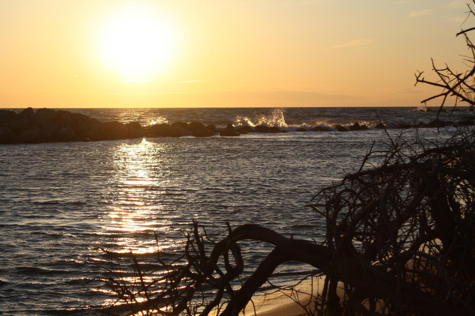Coucher de soleil en Camargues