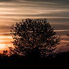coucher de soleil sur Nancy