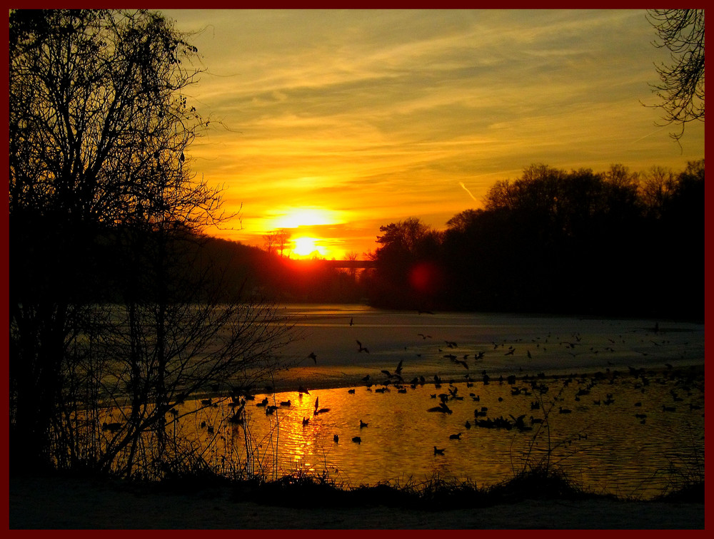 Coucher du soleil aux étangs de Comelles (95)