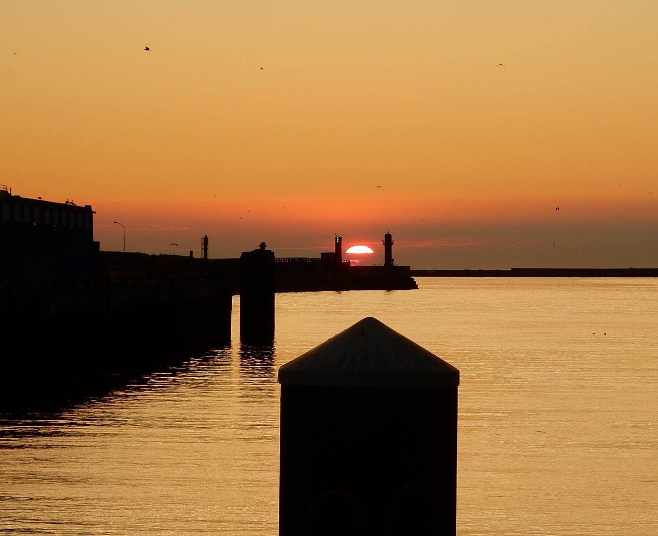 Coucou coucher de soleil