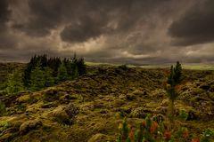 Couleur vert Islande !!
