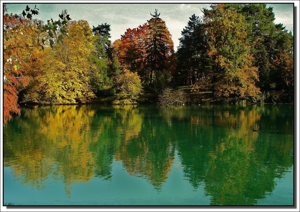 couleurs d'automne !!!