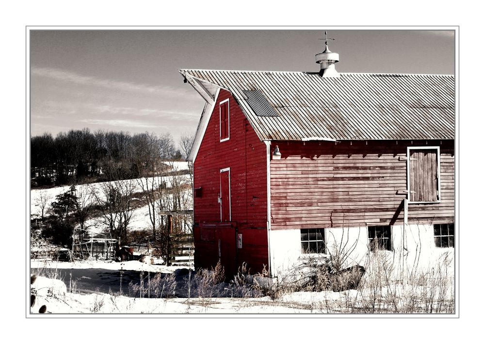 Country Life Americana V