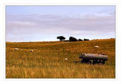Countryside - Landschaft