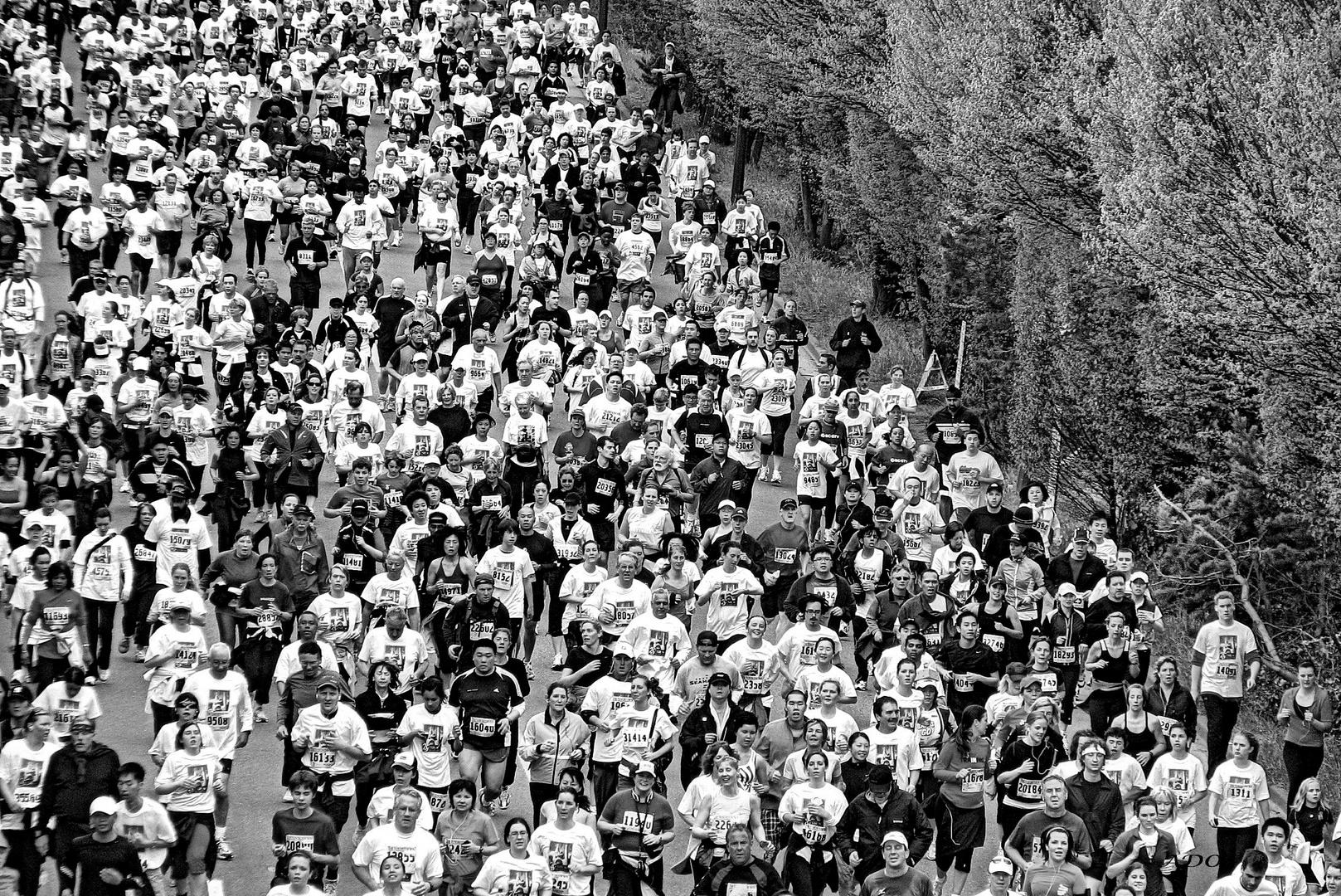 courir pour une cause (2)