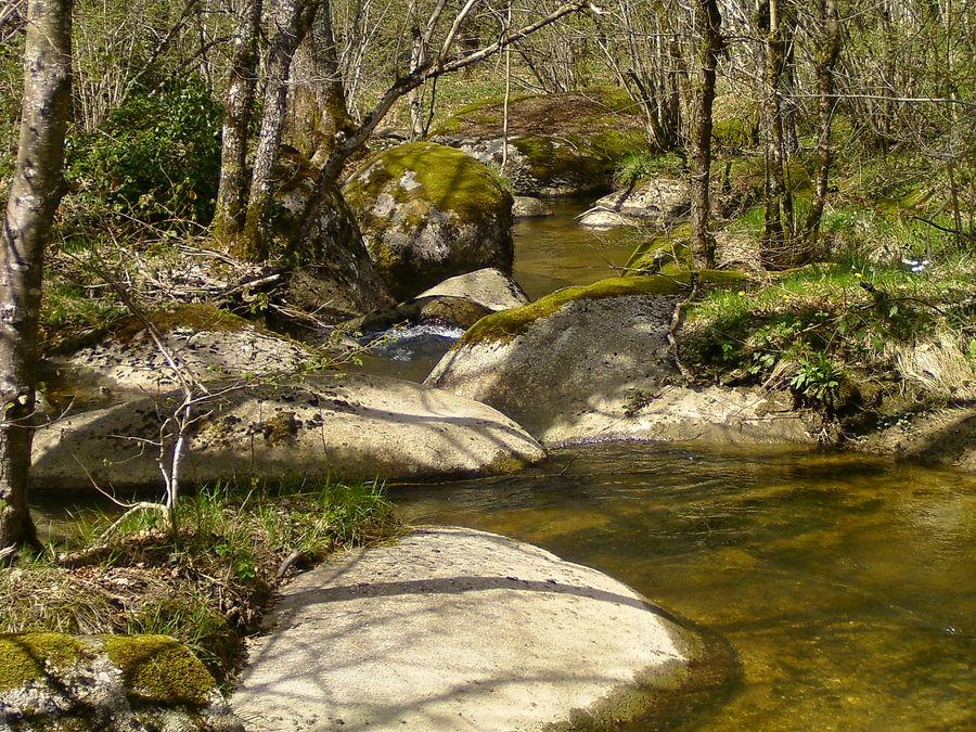 cours d'eau dans le sidobre