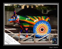 COW PARADE II
