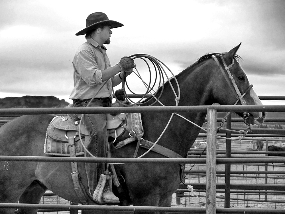 'Cowboys' work is never done'