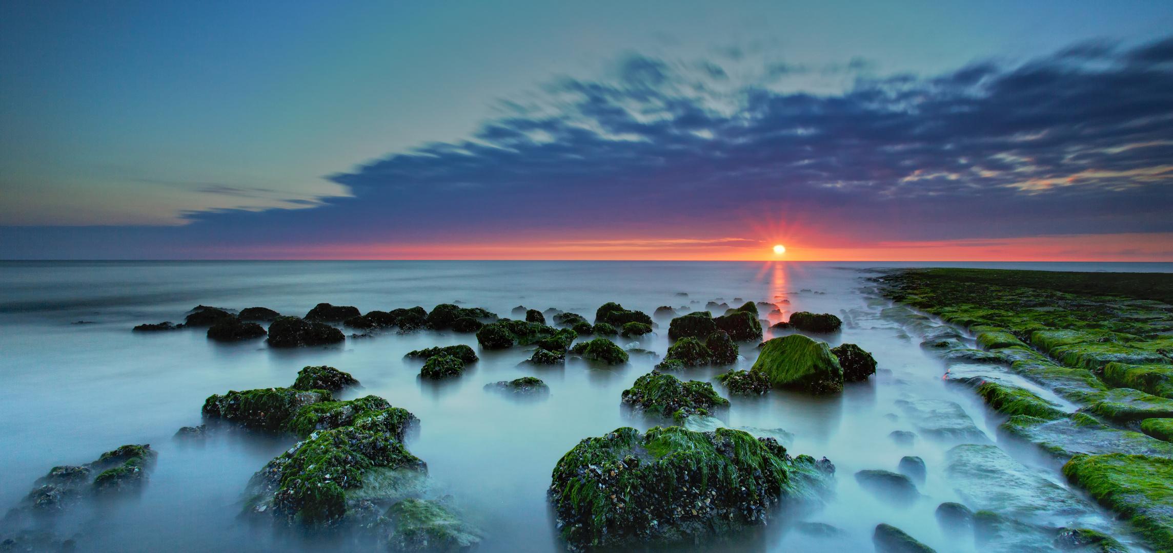 Crabs sunset