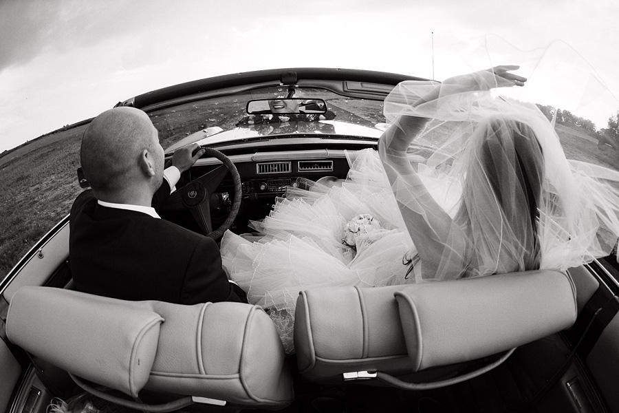 Crazy newlyweds