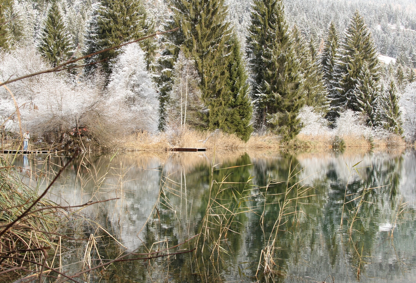 Crestasee November (1)