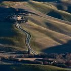 Crete Pisane - Tuscany