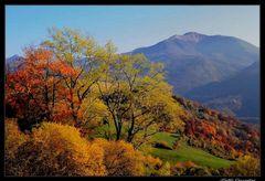 ..cromie d'autunno..