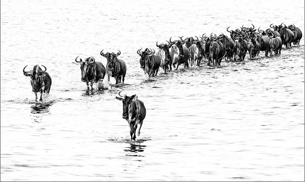 Crossing Lake Masek