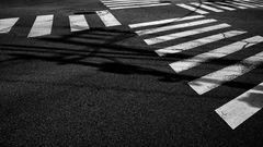 crossing.japan