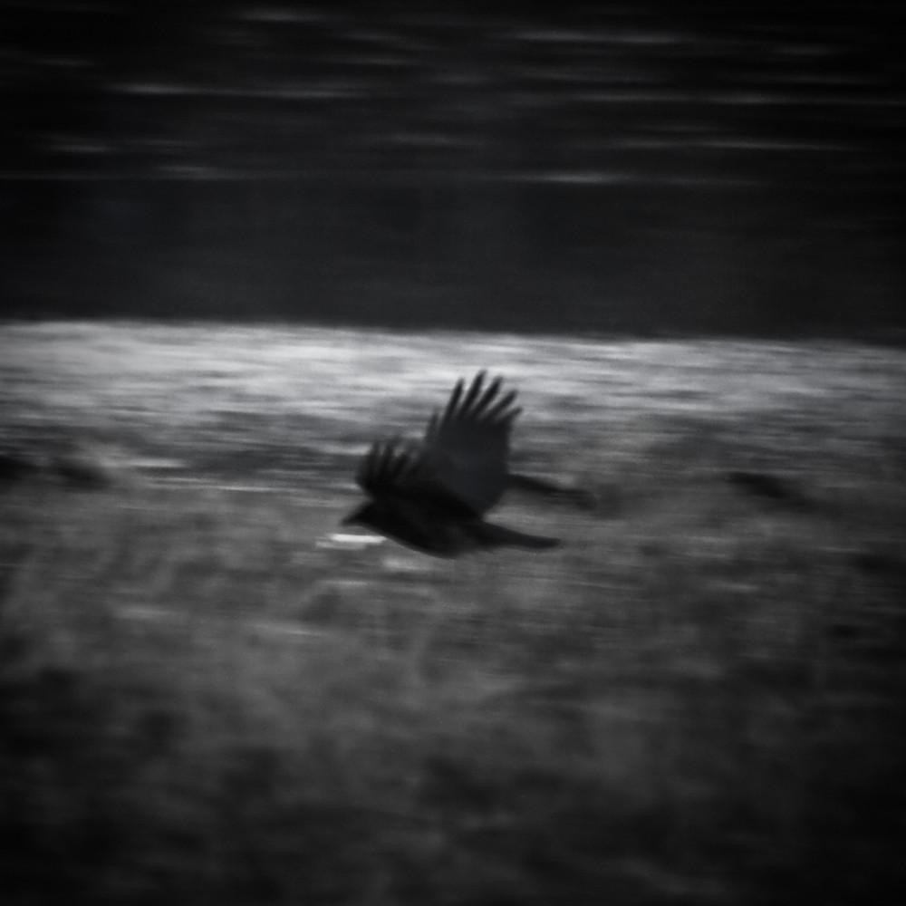 crow wow