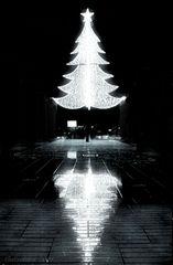 Cuando el brillo de la Navidad despierta la sombra de un niño con zapatos Gorila