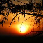 Cuando el sol se oculta