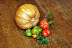 Cucurbita pepo - Solanum lycopersicum