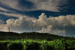 cumulus wein & windcraft