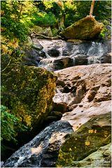 Cunningham Falls Summer - No.2