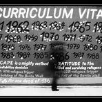 Curriculum Vitae (#11)