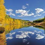 *Cushman Lake*