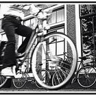 cycle moving