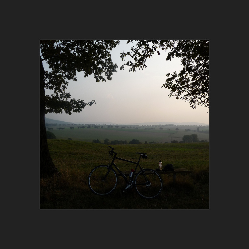 cyclists delight 2