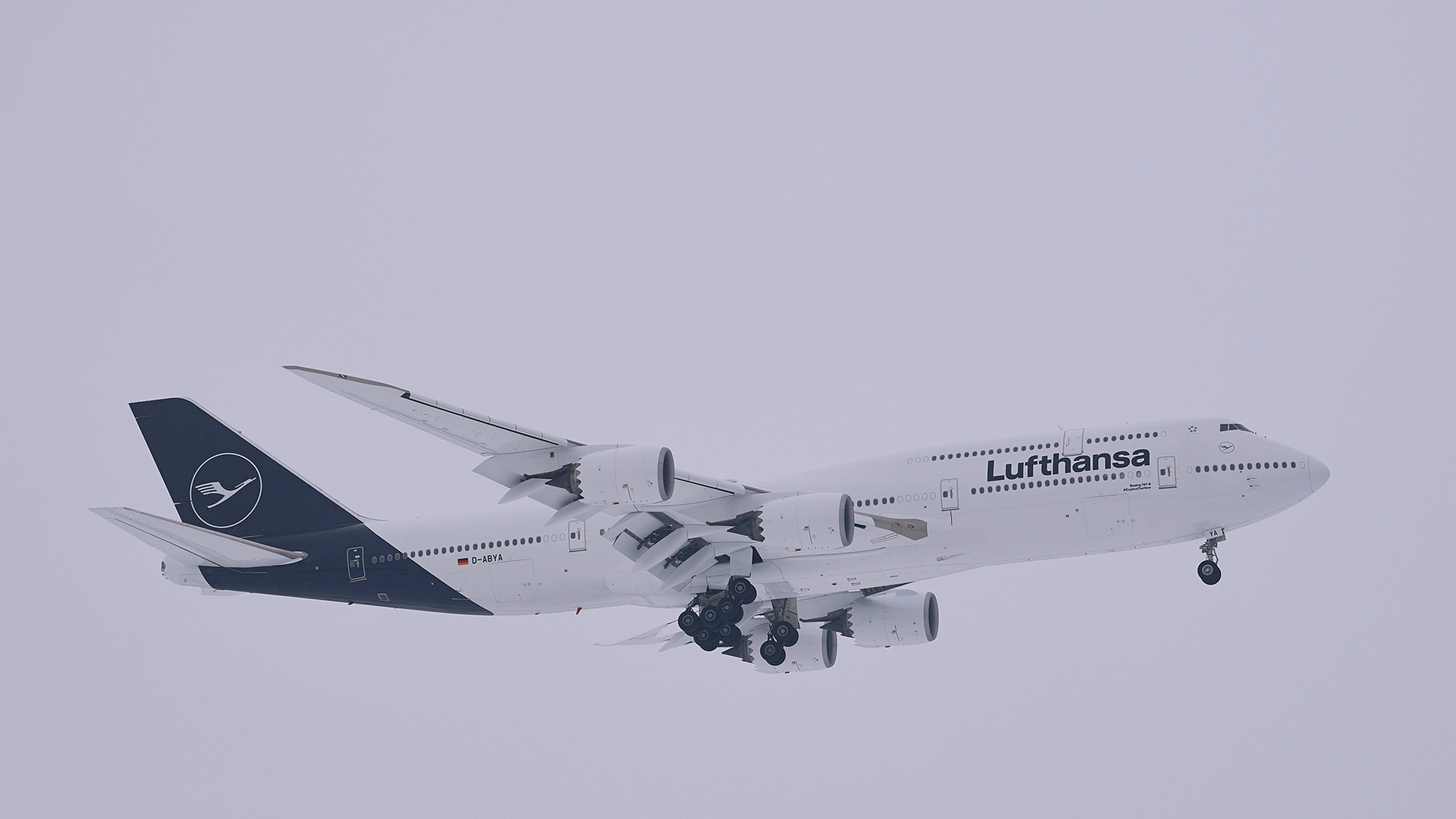 D-ABYA - Lufthansa - Boeing 747-8