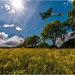 D-AQUI - clear for landing Ju-52