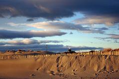 D... comme Dunes et phare de l'Espiguette (34)