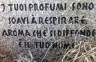 Gedenken an den Römischen Freund von Silvia Fantone