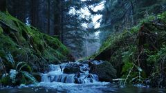 Da fließt viel Wasser den Bach herunter...