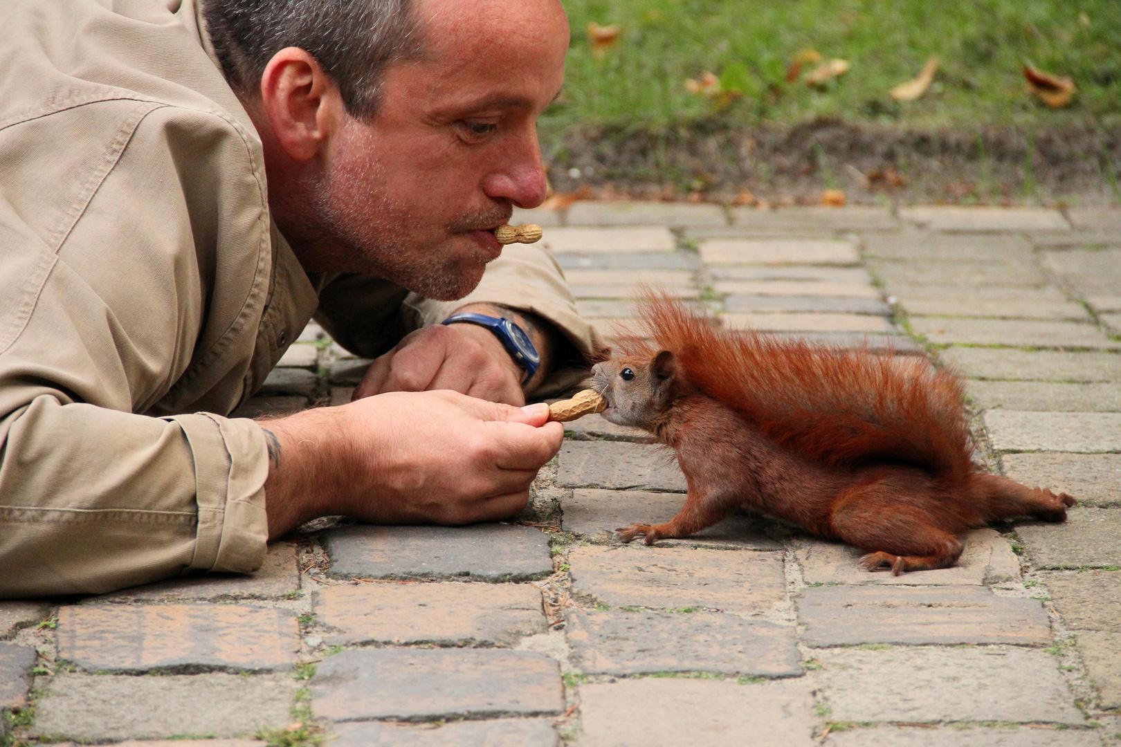 Da haben die Eichhörnchen nicht schlecht geguckt....