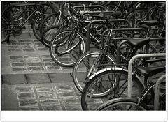 Da nehmen wir doch das Fahrrad