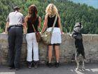 Da sag mal einer Hunde seien nicht neugierig! :-)