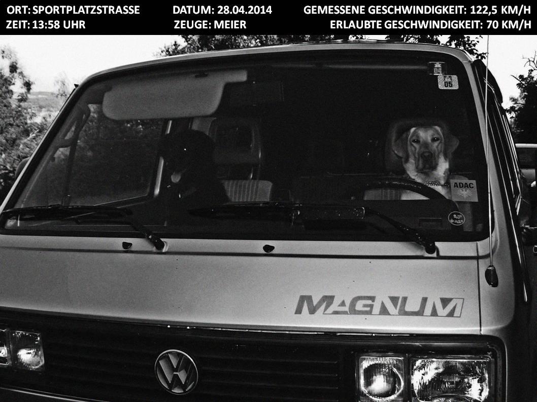 Da war mal wieder jemand zu spät zum Hundetraining unterwegs! Das wird bestimmt teuer! :-)