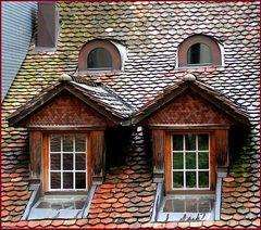 Dach-Fenster zum Hof